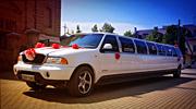 Prabangus 22 vietų limuzinas vestuvėms