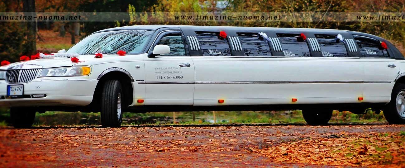 7-14 vietų limuzinų nuoma