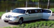8 vietų limuzino nuoma | Baltas