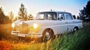 Baltas Mercedes Benz automobilis vestuvėms