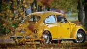 VW Beetle nuoma