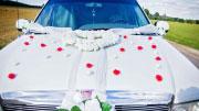Limuzinas vestuvėms Šiauliuose