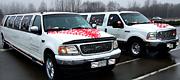 Vestuvinė pora limuzinų