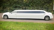 14 vieyų limuzinas vestuvėms