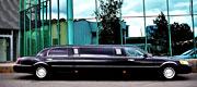 6 vietų limuzinas biznio klasės
